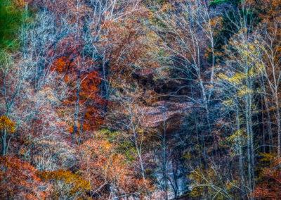 RobertCoomer__RRG_Fall2013_Canon EOS 5D Mark II_2013_MG_5554_HDR