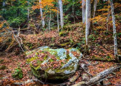 RobertCoomer__RedRiverGorge2016_Canon EOS 5DS R_2016_DR_0548 1_HDR